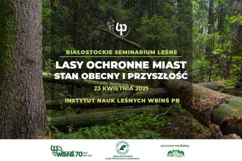 grafika, w tle gęsty las z napisem Lasy ochronne miast, stan obecny i przyszłość