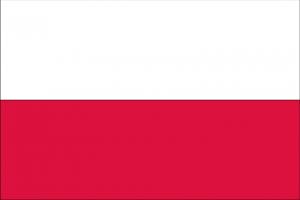 Flaga RP, Dwa równoległe poziome pasy, tej samej szerokości, u góry biały na dole czerwony