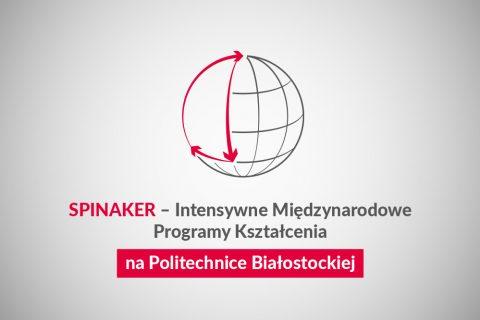 Program Spinaker. Grafika