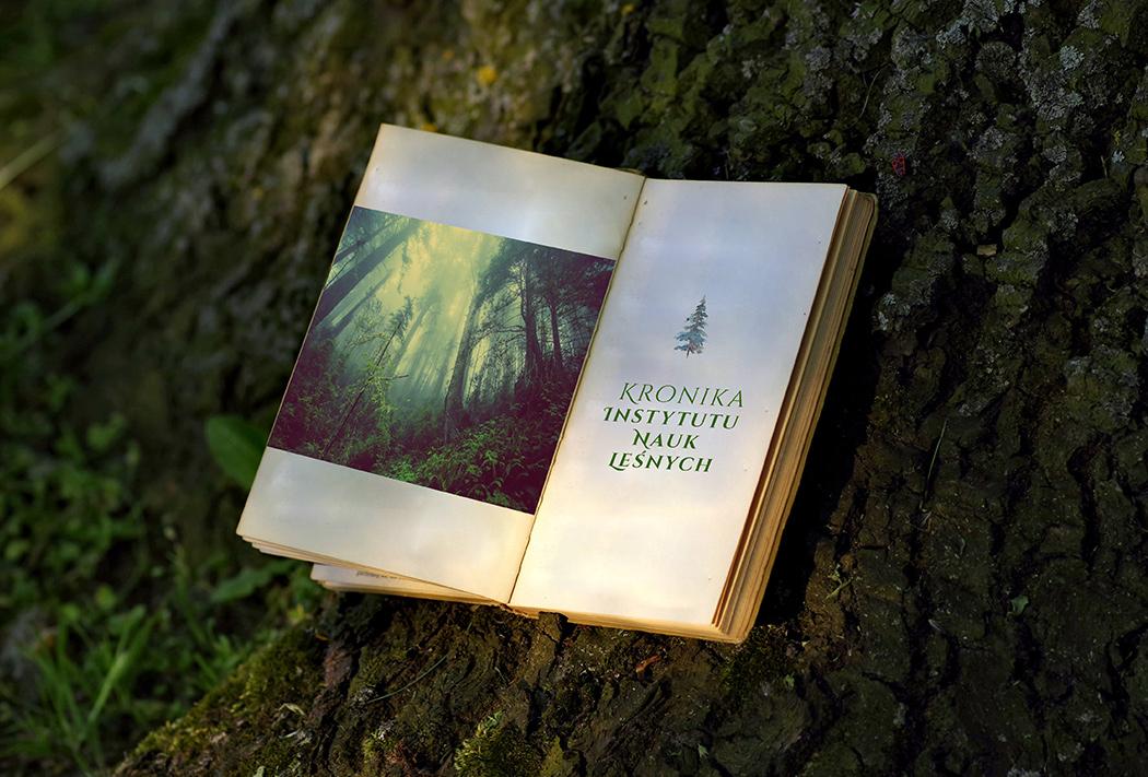 książka na tle pnia drzewa